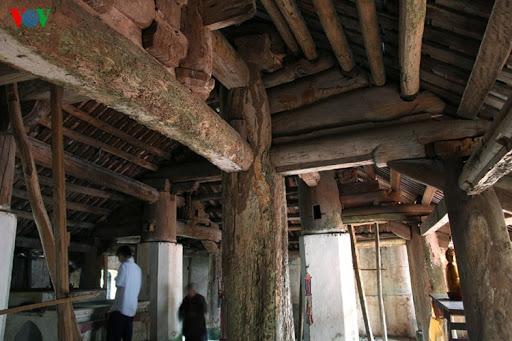 Công nghệ sinh học diệt mối đình chùa tận gốc tại Hà Nội