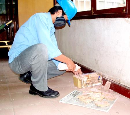 Diệt mối xông hệ thống điện hộp kỹ thuật tại chung cư